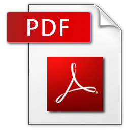 Adobe Acrobat Icon 2